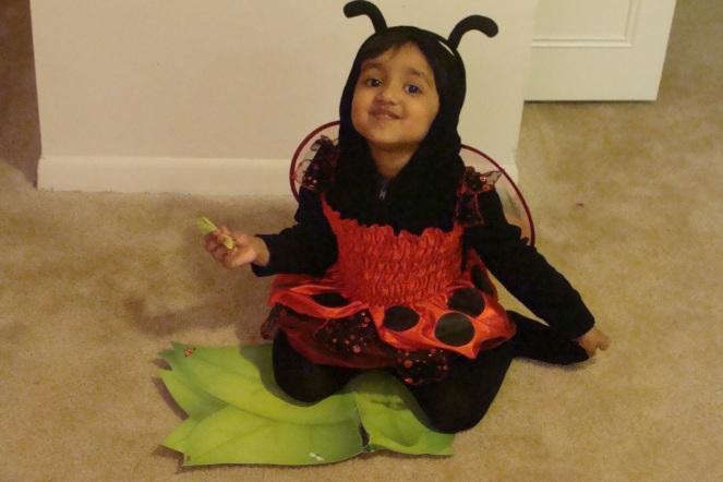 Rishita's ladybug costume
